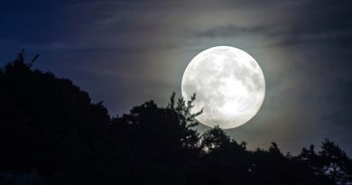 """Cuándo se podrá ver la """"Luna de nieve"""" de febrero"""